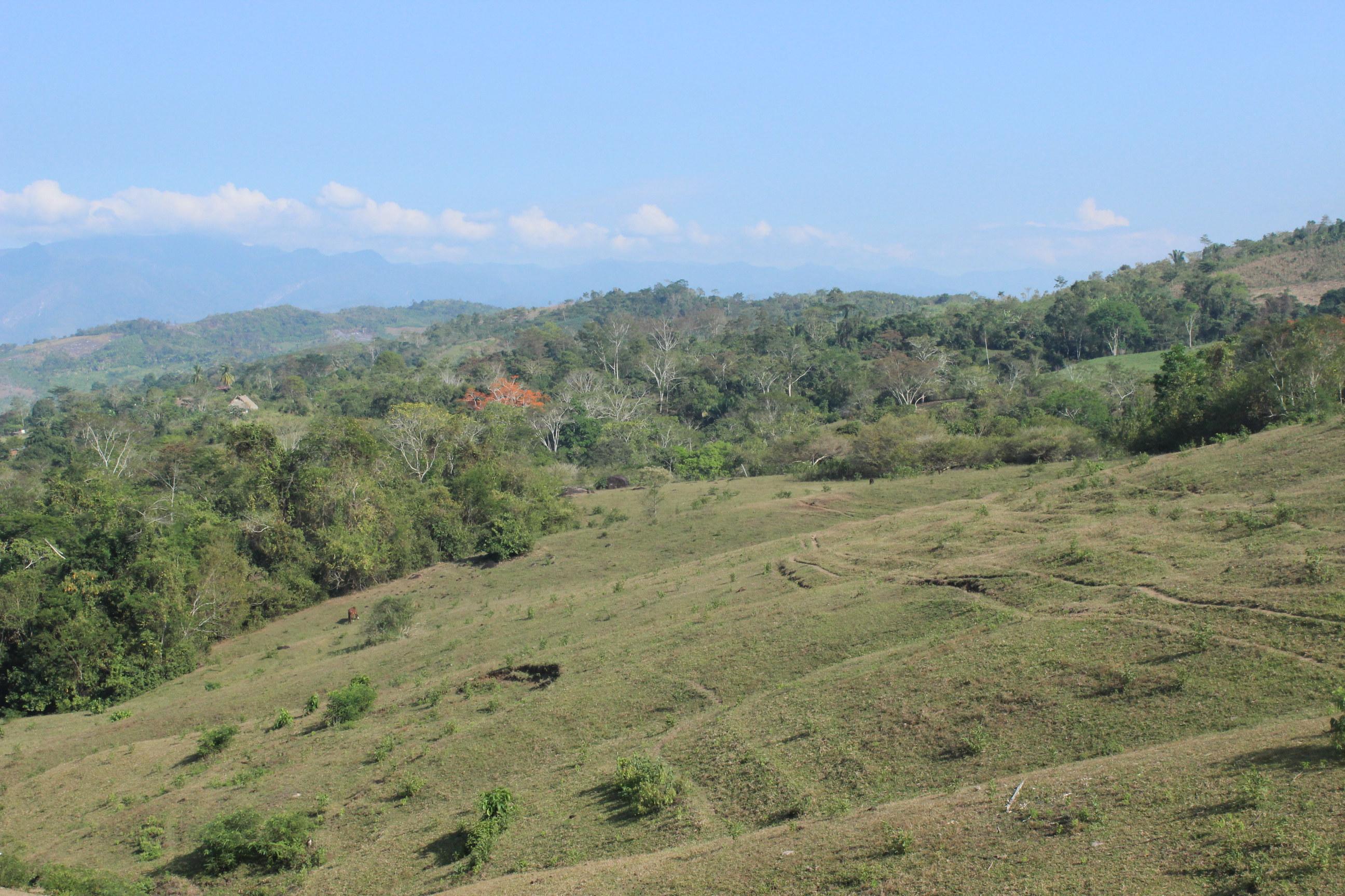 Vallee de Sisa au Pérou - Vue du nouveau terrain avant plantation